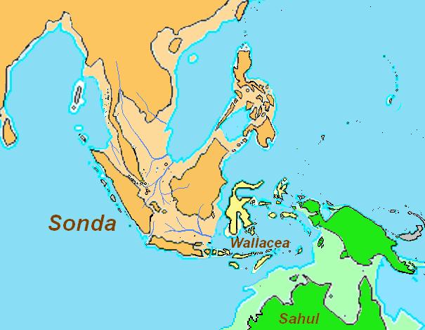 Persebaran Kebudayaan Indonesia pada Zaman Es